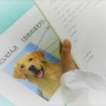 ReCheri通信 vol.9 Team  HOPEのイベントに参加して、ペットの健康を考える。