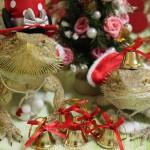 フトアゴヒゲトカゲの魅力と育児日記がもたらした素敵な出会い!