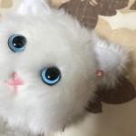 ReCheri通信 vol.17 ロート製薬「SUGAO」オマケの白猫ポーチが可愛くてハイクオリティ(=^・・^=)