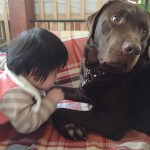 ペットと赤ちゃんはいつから触れ合わせればいい?我が家の体験談をご紹介