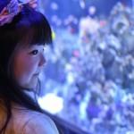 海の生き物と触れ合える!東京都内のおすすめ水族館2選