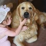 ペットロス・人生を変えてくれた愛犬と後悔と不思議な縁