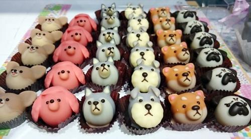 動物モチーフのチョコレート