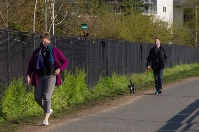 犬と散歩する人