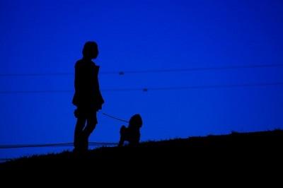 愛犬と夜の散歩