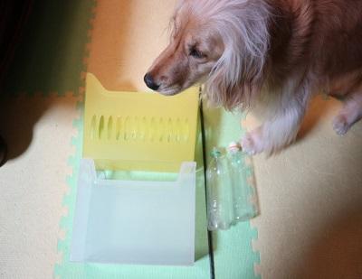 犬と手作りおもちゃの材料