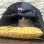 愛猫にハンドメイド☆猫用テント型ベッドの作り方