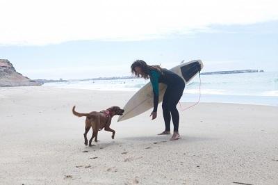 犬とサーフボードを持つ女性