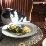 絶対に知っておいて欲しい!猫に危険な食べ物と、中毒の可能性のある症状