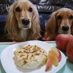愛犬手作りごはんレシピ★フライパンで作るアップルパイ