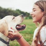 暑くなると増えてくるダニや蚊から愛犬を守ろう!愛犬を害虫から守るための予防対策