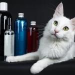 猫にも人にもやさしいおすすめのペット用シャンプー7選