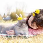 元飼育員が解説!愛ウサギの健康チェック6つのポイント☆