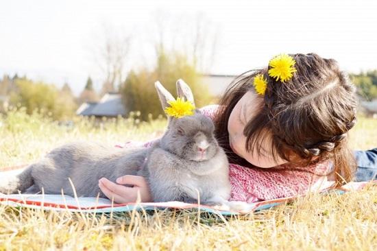 ウサギと女の子
