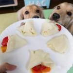 愛犬のおやつにオススメ!犬用もっちり米粉クレープの作り方☆